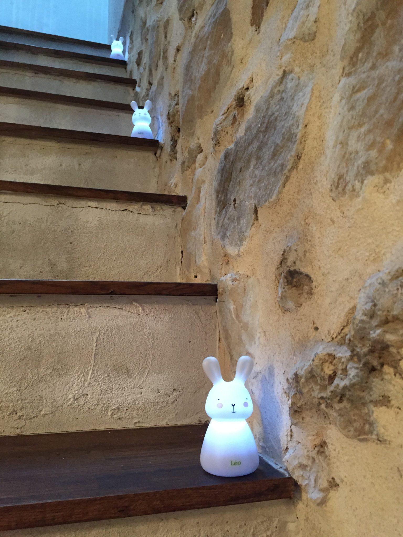 Olala konijntjes